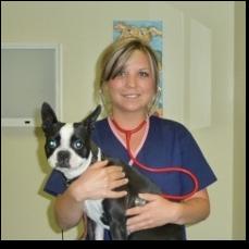 veterinarians big lick veterinary services roanoke va