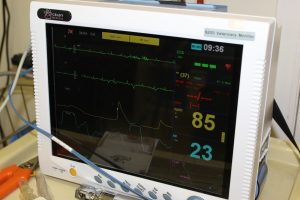 Electrocardiogram (EKG) - Veterinary Cardiology Services - Roanoke, VA