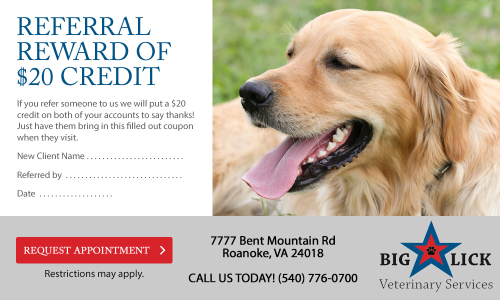 Big Lick Veterinary Services Referral Credit