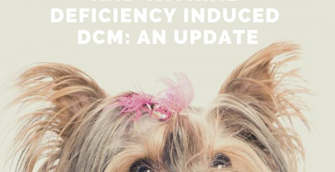 dcm image