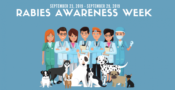 Rabies Awareness Week 2019